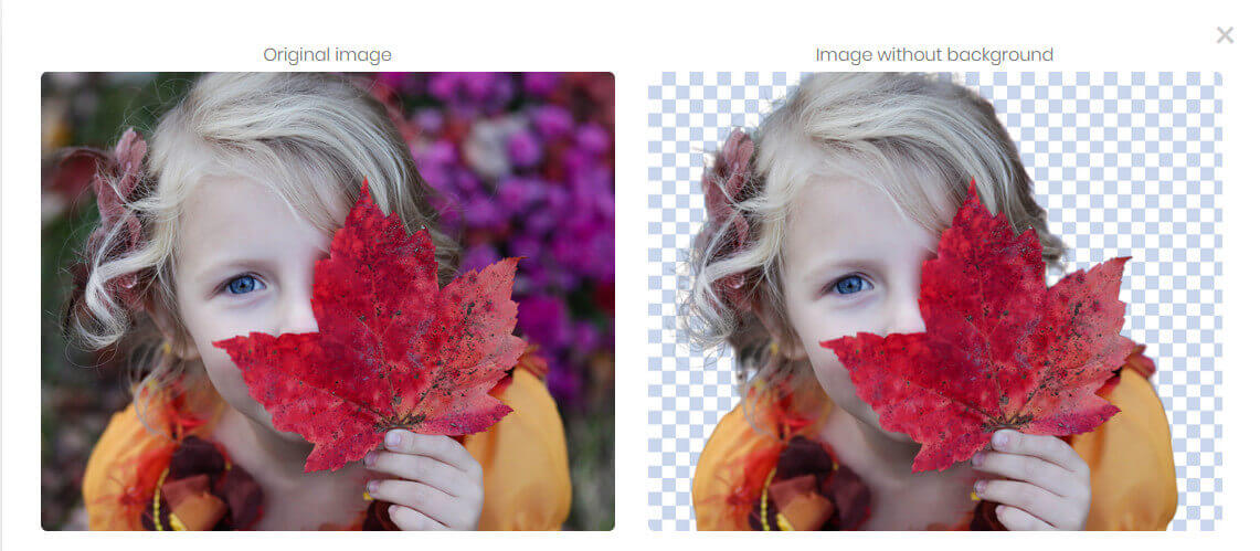 remove-3.jpg